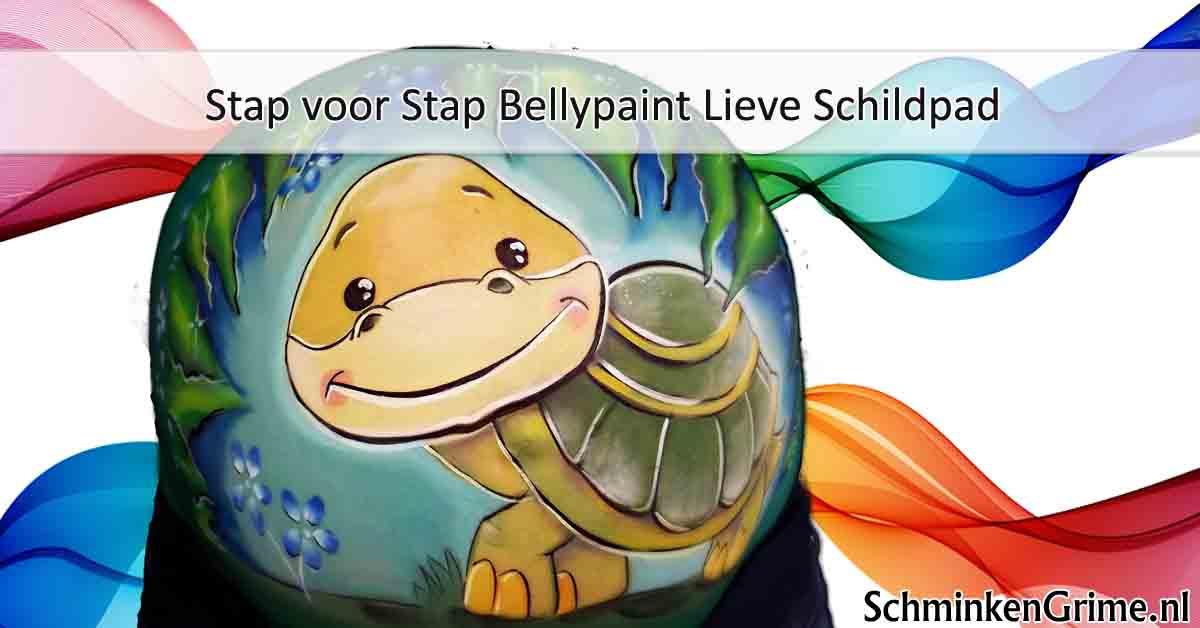 Stap voor Stap Bellypaint Lieve Schildpad